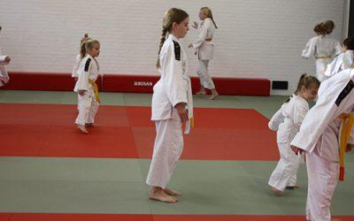 Gratis proefles Judo